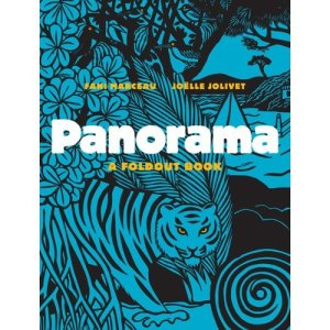 Panorama: A Fold-Out Book