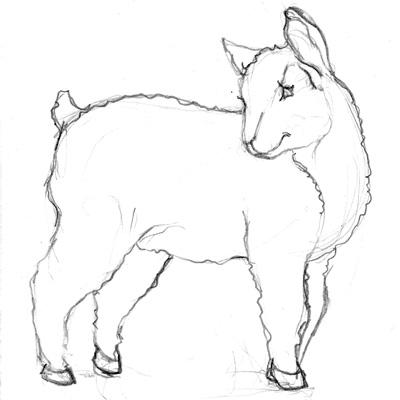 Farm Animal Sketch Preview Walking In Public
